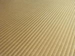 黄金の畳 金の畳.jpg